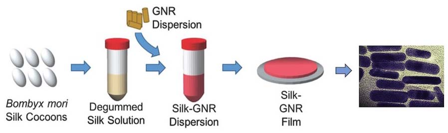 Sealant processing requires isolation of silk from cocoons, creation of silk solution, and addition of gold nanorods (GNR). The silk-GNR mix is formed into a silk-GNR film. The gold nanorods dispersed in the silk film are shown on the right. (Credit: Urie et al. Adv. Funct. Mater., 2018)